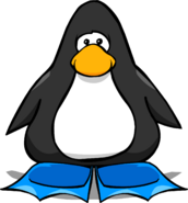 Blue Flippers from a Player Card