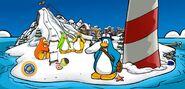 Club penguin banner