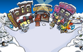 Town 2006 Ice Rink