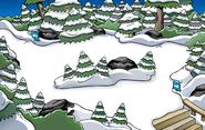 Icecream Cone Pin location
