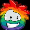 Rainbowp5