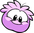 Pink Puffle28
