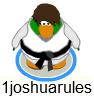 1joshuarulesCard-JitsuLookIn-Game