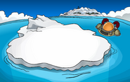 Iceberg 2008 2