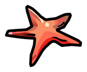 Starfish Pin.PNG