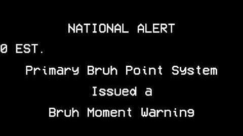 NATIONAL BRUH ALERT