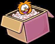 Plok Box Dimension