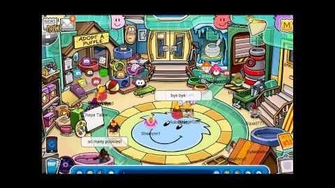 Club Penguin An Average Day at the Pet Shop