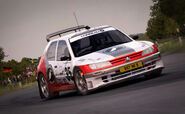 DirtRally 306Maxi Germany 1