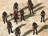 Militant squad