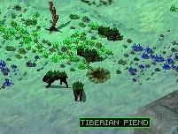 Tiberian fiend