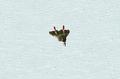 CNCRA2YR MiG.png