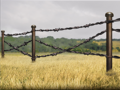 RAR Barbed Wire Cameo.png