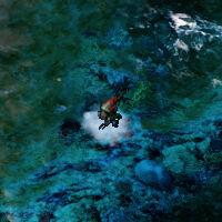 Terror drone water.jpg