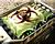 Gen1 Bio Bomb Icons.png