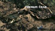 Tiberium carb.jpg
