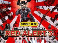 RA3 Bundle Electronic Cover.jpg