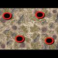 Grasslands Landgrab.jpg