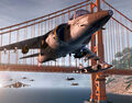 Harrier Strike Alcatraz.jpg