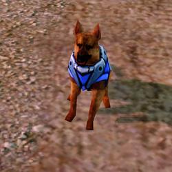 RA3 Attack Dog land.png