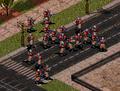 RA2 Conscripts.png