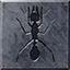 CCRC Achievement Ants.png