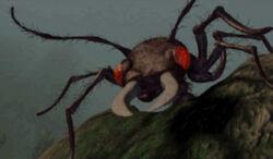 Giant Ant.jpg
