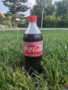 Coca-Cola Cherry Vanilla in grass
