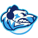 Artic eSportslogo square.png