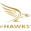 EHAWKS NAlogo square.png