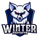 Winter Esportslogo square.png