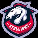 Team Stallionslogo square.png