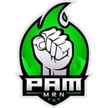 PAM MRNlogo square.png