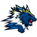 Wolf Gaminglogo square.png