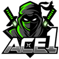 ACE1logo square.png