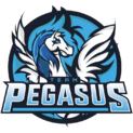 Team Pegasuslogo square.png
