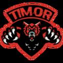 Timor Esports FPLlogo square.png