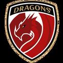 Dragonslogo square.png