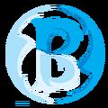 BasiC eSports NLlogo square.png