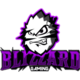 Blizzard Gaminglogo square.png