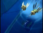 Vertigo Odd swims below two Hornets image 1