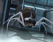 Arachnophobie 195