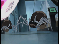 Bragging Rights robot spider is attacked by Fan image 1