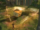Code-lyoko-ulrich-uses-triangulate-on-a-blok-in-the-forest-sector.png