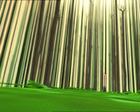 Code Lyoko - The Forest Sector - Trees.png