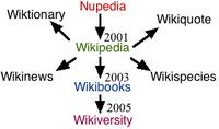 The origins of Wikiversity