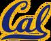Cal Golden Bears.png