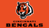 AFL-NFL-AFC-CIN-2004 Bengals mascot and wordmark alternate logo