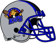 ArenaLeague-Nashville Kats 1997-2001 Helmet