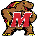 Maryland Terrapins.jpg